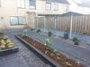 Buxusbollen en pennisetums